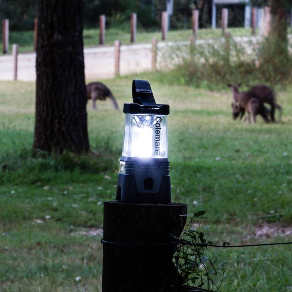 Coleman Lithium Ion LED Easy Hang Lantern - Sitting on tree stump with light on