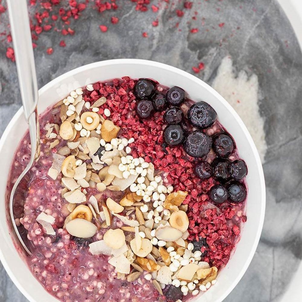 Radix Nutrition Plant-Based Mixed Berry Breakfast - PERFORMANCE 450